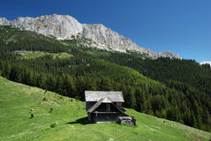 Hunting lodge in mountains. Mountain hunting lodge in Bucegi (Carpathian Mountains, Romania Royalty Free Stock Photos