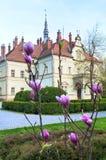 Hunting Lodge (palace) of Shenborn Royalty Free Stock Image