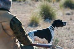 Hunting partners Royalty Free Stock Photos