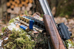 Hunting rifle with ammunition. Lying in the forest Royalty Free Stock Image