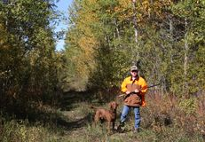Hunting ruffed grouse. Ruffed grouse hunter enjoys the autumn setting Stock Photo