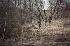 Hunting scene with hunters in camouflage stealing in spring forest with dry leaves during hunting season Royalty Free Stock Photos
