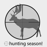 Hunting season with deer in gunsight Stock Photo