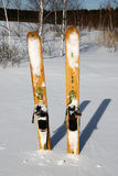 Hunting Skiing. On the snow background Royalty Free Stock Image