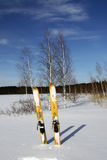 Hunting Skiing. On the frozen lake background Royalty Free Stock Image