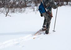 Hunting with snowshoes on a calm day Royalty Free Stock Photo