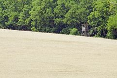 Hunting stand by grain field Royalty Free Stock Photo