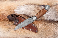 Hunting still life. Hunting knife from braided hurlled on background of the fur Stock Images