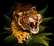 The Hunting Tiger. The tiger hunting in the midnight jungles vector illustration