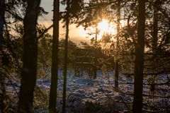 Hunting tower on a bog in backlight. In varmland Sweden januari 2019 royalty free stock photos