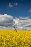 Hunting tower on the rape field Royalty Free Stock Images