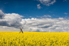 Hunting tower on the rape field Stock Images