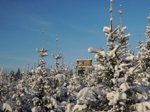 Hunting tower in a snow covered landscape royalty free stock photo