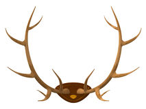 Hunting trophy stock photos