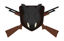 Hunting trophy. Boar head. Hunting trophy. Stuffed taxidermy wild boar head with big tusks in wood shield. 2 crossed shotguns. Color illustration  on white Stock Images
