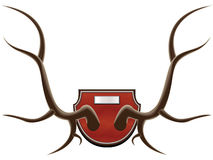 Hunting trophy - horns Royalty Free Stock Photography
