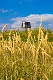Hunting watchtower on a mountain meadow at sunny autumn afternoon Royalty Free Stock Image
