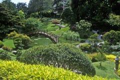 Huntington arkiv och trädgårdar, japanska trädgårdar, Pasadena, CA Royaltyfria Bilder