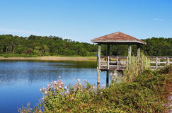 Huntington Beach State Park landscape. Stock Photography