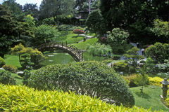 Huntington biblioteka i ogródy, Japońscy ogródy, Pasadena, CA Obrazy Royalty Free