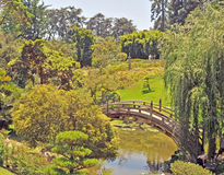 Huntington Museum: Tranquil Japanese Garden royalty free stock images