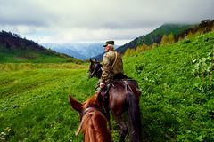 Huntsman is a horse in the mountains Royalty Free Stock Photos
