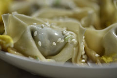 Huntun  Shanghai. The  tradition food in South china.Just like boiled dumplings in North china Stock Images