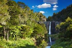 Hunua-Fälle, Neuseeland Stockbild