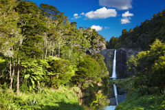 Hunua Falls, New Zealand Stock Image