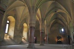 Hunyadi-Schloss Lizenzfreie Stockbilder