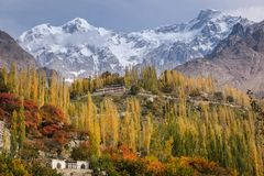 Hunza autumn scene show colorful leaves and trees with snow capped mountains. royalty free stock photos