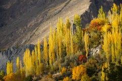 Hunza dal i höst, nordliga Pakistan Arkivfoton