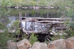 Huon flod i Tasmanien Arkivfoto