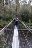 Huonrivier in Tasmanige Stock Foto's