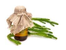 Huperzia selago with pharmaceutical bottle Stock Images