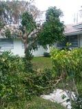 Huracán Irma imagenes de archivo