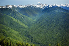 Huracán Ridge de las montañas de la nieve de los valles verdes Foto de archivo libre de regalías