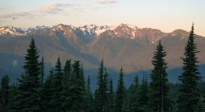 Huracán Ridge de las montañas olímpicas de la ladera de la cubierta de los Wildflowers Imagenes de archivo