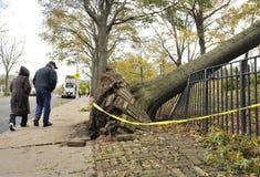 Huracán Sandy imagen de archivo libre de regalías