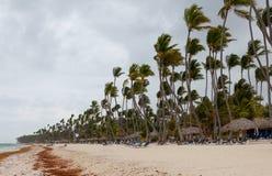 Huragan na plaży w dniu Zdjęcia Stock