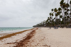 Huragan na plaży w dniu Zdjęcie Royalty Free