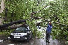 Huragan w Moskwa pukał puszków drzewa Drzewo spadał na drogim samochodzie Zdjęcie Royalty Free