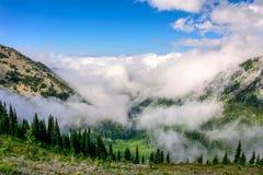 Huraganowa grań W górach Olimpijski park narodowy, stan washington fotografia royalty free