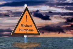 Huraganowy Michael, powodzi pojęcie 3d ilustracja wektor