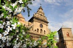 Hurch del ¡ di St Andrew Ð, precedente chiesa di Bernardine e monastero Lvi immagine stock