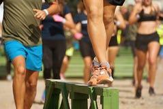 Hurdle race a group Stock Image