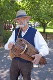 Hurdy gurdy player  Royalty Free Stock Photography