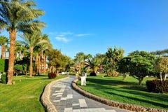 HURGHADA, ÄGYPTEN - 14. OKTOBER 2013: Schöne Palmen in einem tropischen Luxushotel auf den Ufern des Roten Meers Lizenzfreies Stockfoto