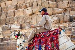 HURGHADA, ЕГИПЕТ 22-ОЕ ФЕВРАЛЯ 2010: Неопознанный всадник верблюда в Египте Стоковые Фото