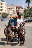 HURGHADA, EGIPT LUTY 22, 2010: Dwa niezidentyfikowanego muła jeźdza na furze Fotografia Stock